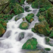 Falls among green stones - Stockfoto