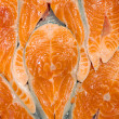 Crude fillet of a salmon — Stock Photo