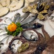 Show-window of fish shop - Stock Photo