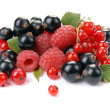 Raspberry , red and black currant - Stock Photo