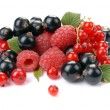 Royalty-Free Stock Photo: Raspberry , red and black currant