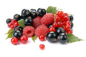 Raspberry , red and black currant — Stock Photo