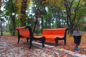 Benches in city park — Stock Photo