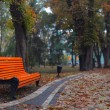 Benches in city park — Stock Photo #2450859