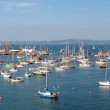 Panorama of a bay with the sailing ships — Stock Photo
