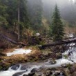 The mountain river in Carpathians — Foto Stock