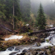 The mountain river in Carpathians — ストック写真