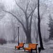 Benches - Lizenzfreies Foto