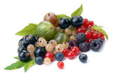 Summer berries with leaves — Stock Photo