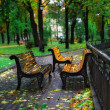 Autumn sheet on a bench in city park — Stock Photo #2572754