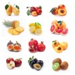 Collection of ripe fruits images — Stock Photo #2573133