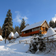 House in Carpathians in the winter — 图库照片