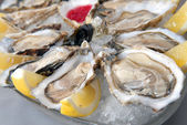 Oysters in ice with a lemon — 图库照片