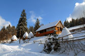 House in Carpathians in the winter — Stock Photo