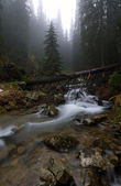 Picture of Carpathians — Stock Photo