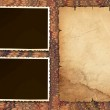 Vintage paper and photo frames — Stock Photo #2088721