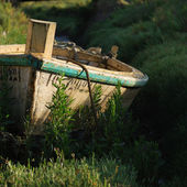 Small boat and grass — Stock Photo