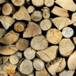 Stacked Wood logs — Stock Photo #2387103