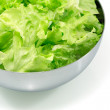 Salad leaves in a metal bowl - Stock Photo