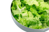 Lettuce in a bowl — Stock Photo
