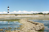 Stone path to the lighthouse — Stock Photo