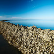 Seawall under deep blue sky — Stock Photo