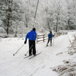 Cross-country skiing. - Stock Photo