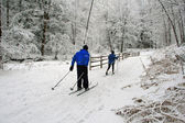 Cross-country skiing. — Stockfoto