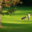 Golfing in the summer! — Stock Photo #2219272