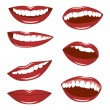 Female lips - Stock Vector