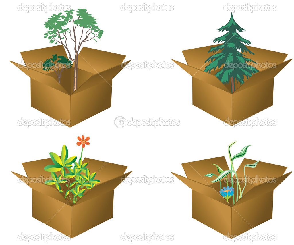 Flowers and trees in cardboard boxes — Stock Vector #2392051