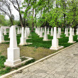Soviet Military Cemetery — Stock Photo #2077522