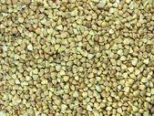 Les céréales alimentaires bouchent de sarrasin — Photo