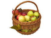 Harvesting. apples in a wooden basket — Stock Photo