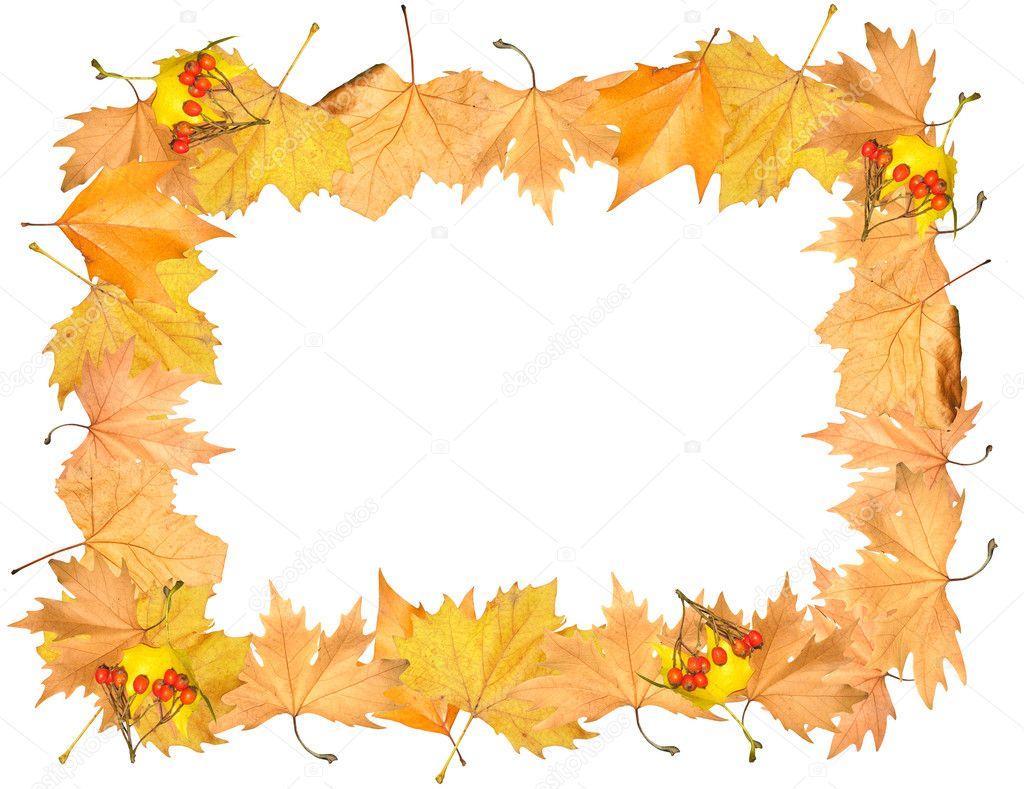 http://static3.depositphotos.com/1006443/208/i/950/depositphotos_2089005-stock-photo-frame-of-autumn-yellow-leaves.jpg