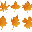 Set of golden pattern autumn leaves - Stock Photo