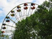 Ferris wheel above top of the trees — Stock Photo