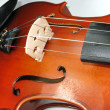 Musical classic violin macro detail - Stockfoto