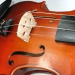 hudební klasické housle makro detail — Stock fotografie #2275316