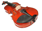 Musical classic violin isolated — Stock Photo