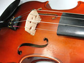 Musical classic violin macro detail — Stock Photo
