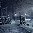 Winter park at night. — Zdjęcie stockowe #2055035