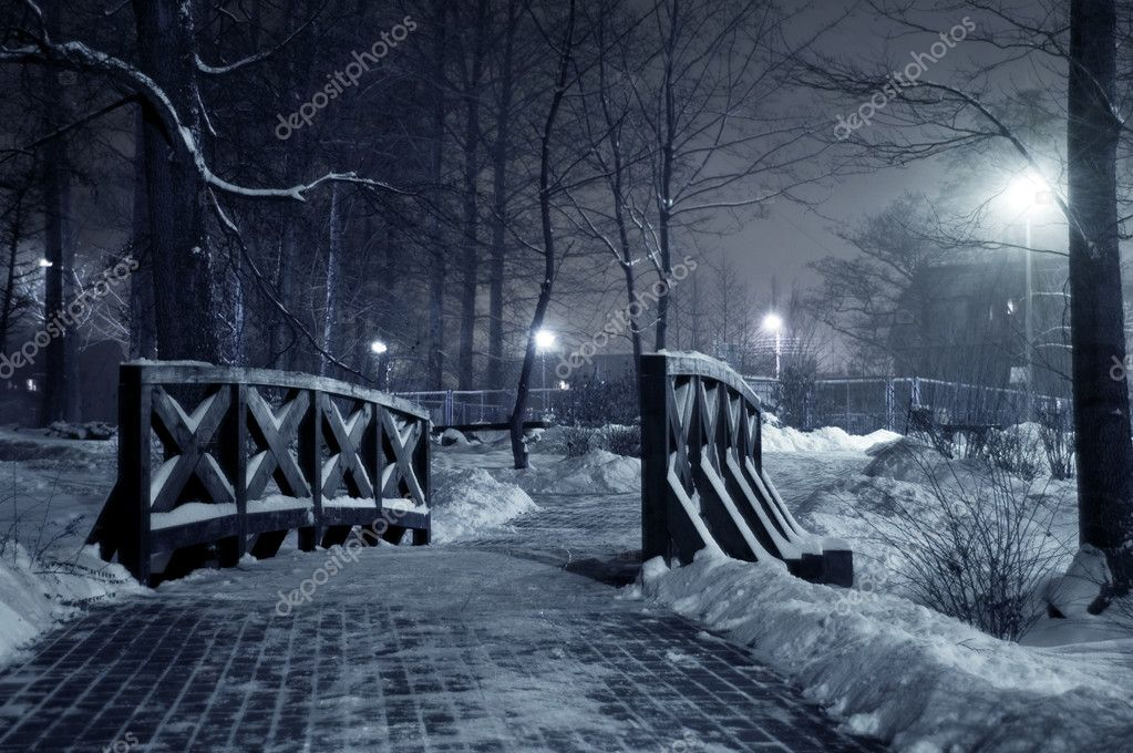 Winter park at night. Frosty winter in dark park. — Stock Photo #2055035