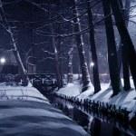 Winter park at night. — Stock Photo