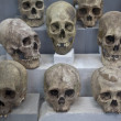 Stock Photo: Ancient Skulls