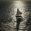 Sail Boat Silhouette — Stock Photo #2271690