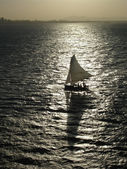 Sail Boat Silhouette — Stock Photo
