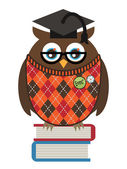 Owl professor — Stock Vector