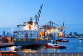 Cargo ship docking — Stock Photo