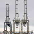 Stock Photo: Three Cranes